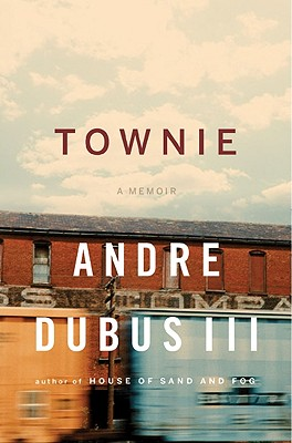 Book Review: <i>Townie</i>